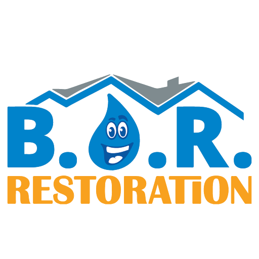 best option restoration savannah site icon water restoration logo